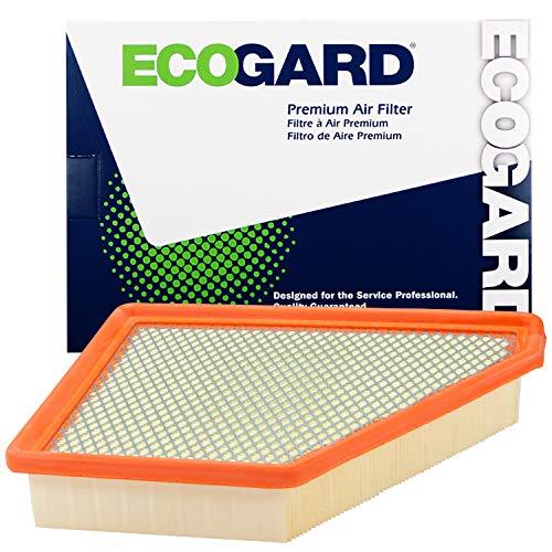 ECOGARD XA6131 Premium Engine Air Filter Fits Chevrolet Equinox 2.4L 2010-2017, Equinox 3.6L 2013-2017, Equinox 3.0L 2010-2012 | GMC Terrain 2.4L 2010-2017, Terrain 3.6L 2013-2017
