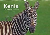Kenia - Die Tiere der Savanne (Wandkalender 2022 DIN A3 quer): Portraits der schoensten Tiere Kenias. (Monatskalender, 14 Seiten )