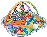 Playgro Manta de Juegos y experiencias del Caballo Clip Clop, con música, Desde 0 Meses, Multicolor, 40203