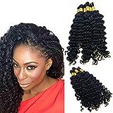 Hannah Queen Wet N Wavy Bulk hair HUMAN HAIR Micro Braiding 3 Bundle 150g Brazilian Deep Curly Wave Bulk Hair For Braiding Human Hair No Weft (18 18 18 Natural Black #1B)