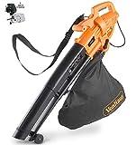 Dynastar VonHaus 220 Volt 3 in 1 Leaf Blower, Garden Vacuum & Mulcher - 2600W - Large Collection Bag | Bundle Plug Adapter(NOT for USA) 220V