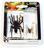 REALBUG 2 Pc Tarantula & Spider Paperweight Collection