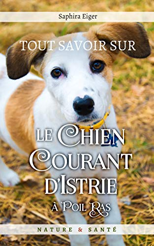 Couverture du livre Tout Savoir Sur Le Chien Courant d'Istrie à Poil Ras (Mon Ami Le Chien)