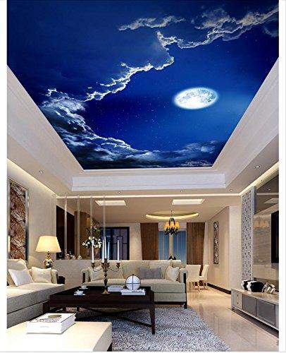 mznm 3D Deckenleuchte Tapeten Malerei Stil Romantic Night Sky Moon Deckenlampe Wandbild Hintergrundbilder für Wohnzimmer Wanddekoration 280x200cm