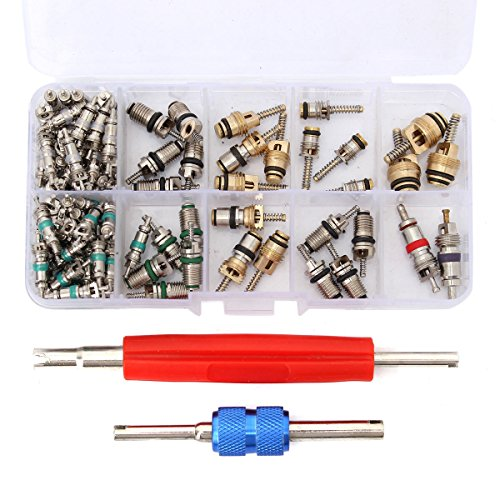ESUMIC Car Air Conditioning Core Valves 102Pcs,R12 R134A Automotive A/C Valve Stem Cores w/Removal Tool for Car Air Contitionaing Repair