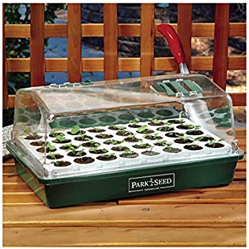 Park Seed Bio Dome Seed Starter Kit with 40 Jumbo Cell Planting Block, Base Tray, Humidity Dome & 40 Bio Sponges
