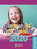 Warum wackelt Wackelpudding? 2020: Aufstellbarer Tages-Abreisskalender für Kinder zum rätseln I 12 x 16 cm - Korsch Verlag