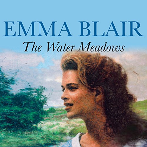 The Water Meadows audiobook cover art