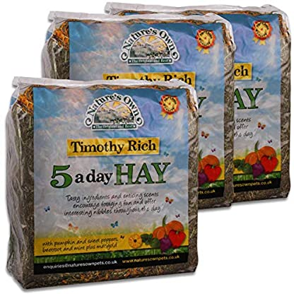 Tigerbox 3 Kilogram Nature's Own Timothy Rich 5 a Day Hay Foraging Feed for Rabbits Guinea Pigs Chinchillas 1