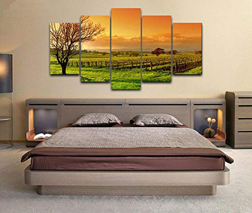 5 Panel Impresión en Lienzo Vino Barossa Valley Vineyard 5 Cuadros Modernos Impresión de Imagen Artística Digitalizada | Lienzo Decorativo para Salón o Dormitorio