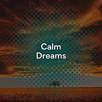 """""""Calm Dreams"""""""