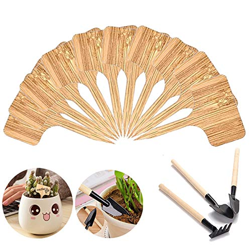 Lifreer Plant Labels 50PCS Square Shape Wooden Bamboo Plant Labels, 3PCS Garden Kit Tools Set for Herb Garden Outdoor Indoor, Seed Potted Herbs Flowers Vegetables