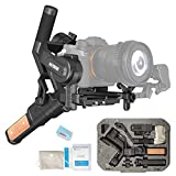 FeiyuTech AK2000S 3-Axis Handheld Gimbal Stabilizer for Mirrorless/DSLR Cameras Compatible with Sony α9/α7R4/A6400, Canon EOS R/M50/M6, Panasonic GH4/GH5S, Nikon Z6/Z7, Fuji XT3/X-T20, 2.2kg Payload