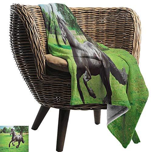 ZSUO kat deken Paarden, Kastanje Kleur Paard Springen in Hackamore Life Force Power Honor Liefde Teken Print,Bruin Crème Gezellige en Duurzame Stof-Machine Wasbaar