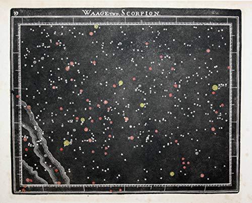 Waage und Scorpion - Waage Scorpion Jungfrau Wolf Kupferstich Himmelskarte Sternenkarte Sternkarte Sternzeichen Tierkreiszeichen Star chart Astrolocial sign