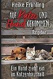 Auf Katze und Hund gekommen: Ein Hund zieht ein im Katzenhaushalt – Ratgeber