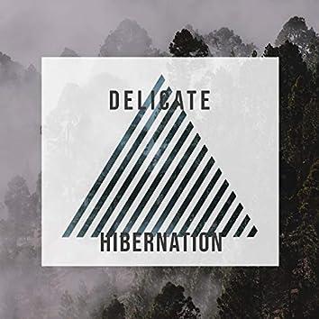 # Delicate Hibernation