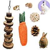 PStarDMoon PD Bunny Chew Toys for Teeth, Natural Apple Wood Chips, Loofa Carrot Toys for Rabbit, Rattan Ball and Pinecone Toys for Rabbits Chinchilla Hamsters Guinea Pigs (Style 1)