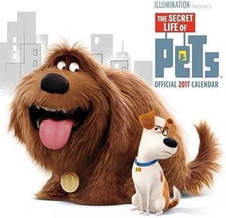 Grupo Erik Editores Secret Life Of Pets Movie - Calendario 2017, 30 x 30 cm (Square)