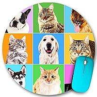 KAPANOU ラウンドマウスパッド カスタムマウスパッド、明るい背景の犬と猫の肖像画、PC ノートパソコン オフィス用 円形 デスクマット 、ズされたゲーミングマウスパッド 滑り止め 耐久性が 200mmx200mm