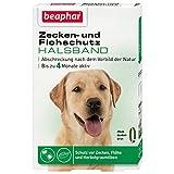 beaphar Zecken- & Flohschutz Halsband Hund | Schutz vor Zecken Flöhen | Wirkt 4 Monate | Hundehalsband mit frischem Duft | Farbe: Grün | Länge: 65cm