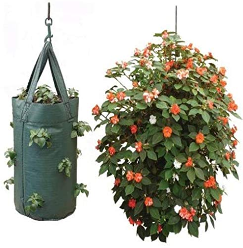 FIF Hanging Tomato Growbag,1