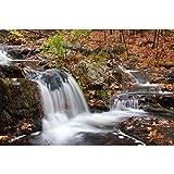 Bria Gran Cascade Nature paisaje otoño-bosque Puzzle 500/1000/1500/2000/3000/4000/5000/6000 niños juguete educativo para niños Tangram 0221 (color A, tamaño: 6000 piezas)