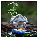 DIWA Pequeño Acuario de Vidrio, Cuello/coloque Tanque de Pescado ecológico Transparente, Plantas en Maceta hidropónica (se proporcionan Arena/Conchas) (Color : Mushroom-Small)