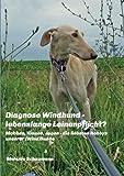 Diagnose Windhund - lebenslange Leinenpflicht?: Mobben, Klauen, Jagen - die liebsten Hobbys unserer (Wind)hunde