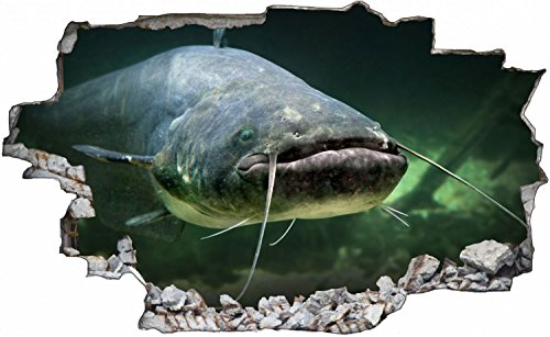 Wels Fisch See Wandtattoo Wandsticker Wandaufkleber C0696 Größe 70 cm x 110 cm