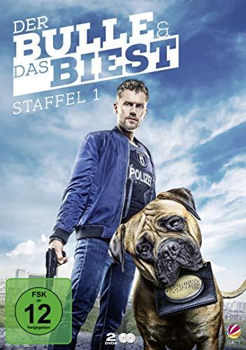 Der Bulle und das Biest - Staffel 1 [2 DVDs]