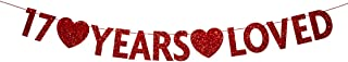 Red 17 Year Loved Banner, Red Glitter Happy 17th Birthday Party Decorations, Supplies