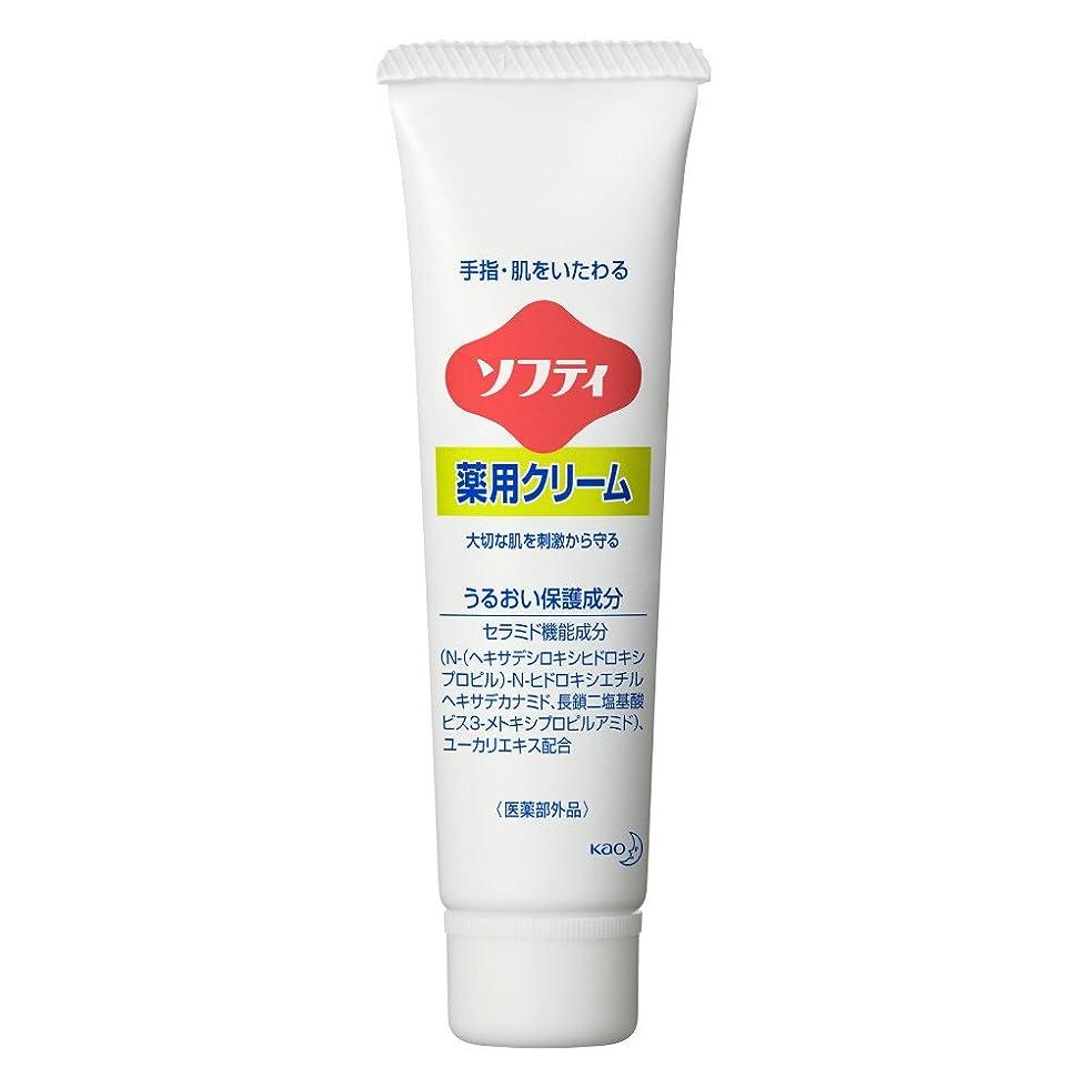 翻訳する全く発送ソフティ 薬用クリーム 35g (花王プロフェッショナルシリーズ)