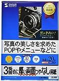 サンワサプライ コピー用紙 A4 厚手 20枚 インクジェット両面印刷紙 JP-ERV3NA4N