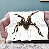 N\ A Throw Blanket Flannel with Decorative Pompom Fringe Lightweight Soft Tassels Blanket Mexican Red Rump Tarantula Cool Teen Girls Warm Plush Blanke for Bed Sofa Chair Indoor Outdoor