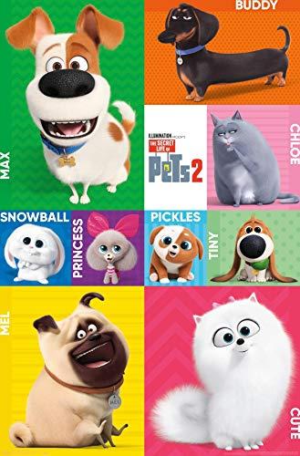 "Trends International Secret Life of Pets 2 - Grid Wall Poster, 22.375"" x 34"", Multi"