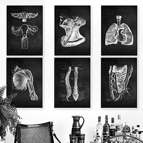 Moderno Humano AnatomíA Obra De Arte Poster Negro Blanco Pared Arte Cuadro MúSculo Esqueleto EducacióN Poster para Decoracion Lienzo Pintura 30x40cmx6 No Marco