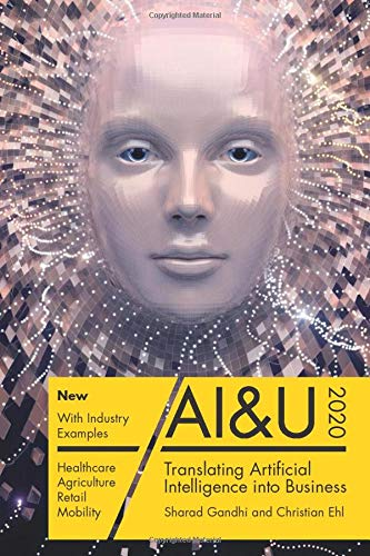 AI&U: Translating Artificial Intelligence into Business
