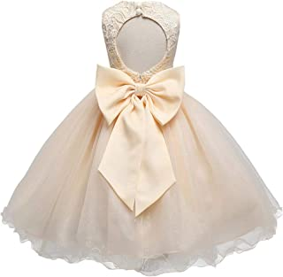 Baby Girls Tulle Lace Flower Bridesmaid Gown Backless Dress with Bow for Party Wedding