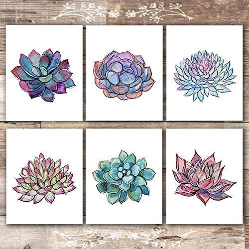 Succulent Watercolor Sketches Art Prints - (Set of 6) - Unframed - 8x10s