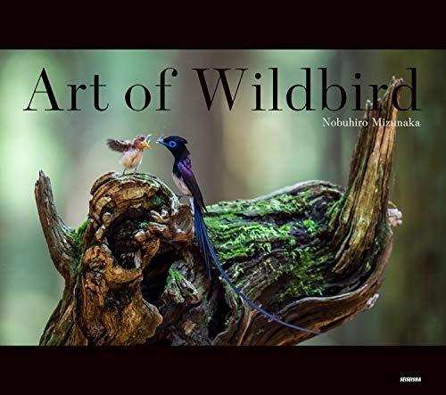 Art of Wildbird (アート・オブ・ワイルドバード)