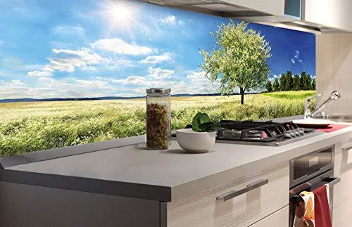 DIMEX LINE Küchenrückwand Folie selbstklebend Baum AUF Wiese | Klebefolie - Dekofolie - Spritzschutz für Küche | Premium QUALITÄT - Made in EU | 180 cm x 60 cm