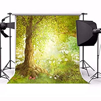 Laeacco 5x5ft Fairy Tale Forest Fantasy Enchanted Photography Background Garden Wonderful Trees Flowers Kids Adults Portraits Photo Studio Video Prop Child Princess Girl Baby Birthday Cake Table Decor