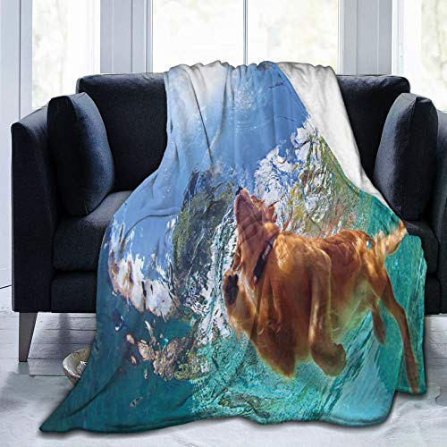 NCRJCZQL Ultra-Soft Micro Fleece Blanket,Underwater Photo Of Golden Labrador Retriever Puppy Swimming In Pool Happy,Home Decor Warm Throw Blanket for Couch Bed 60'X 50'