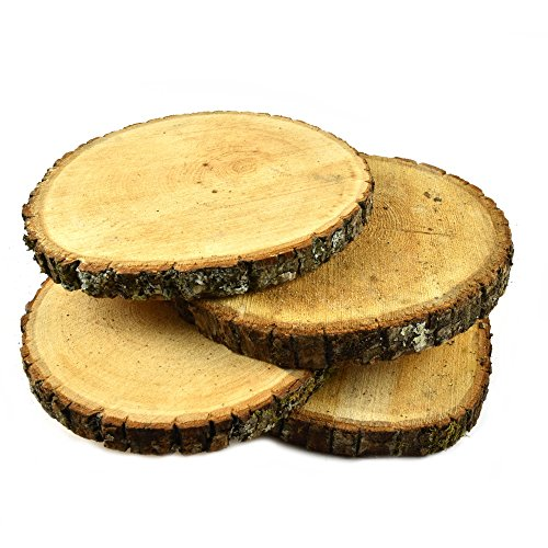 "Natural UNTREATED Basswood SLABS 9"" to 11"" Diameter (Large) - Excellent for Weddings, centerpieces, DIY Projects, Table Chargers or Decoration! by Woodland Decor (Set of Four SLABS)"