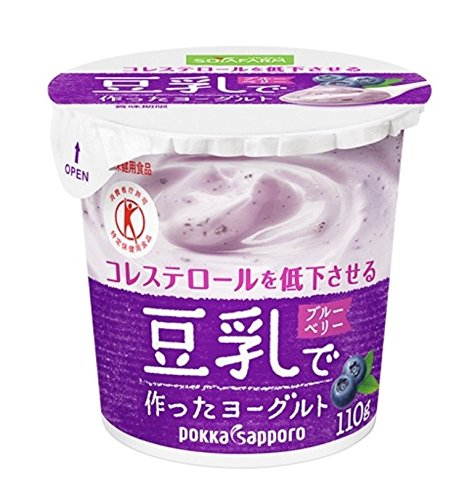 豆乳で作ったヨーグルト フルーツ味 ブルーベリー果肉入り【110g×12コ×2】クール便