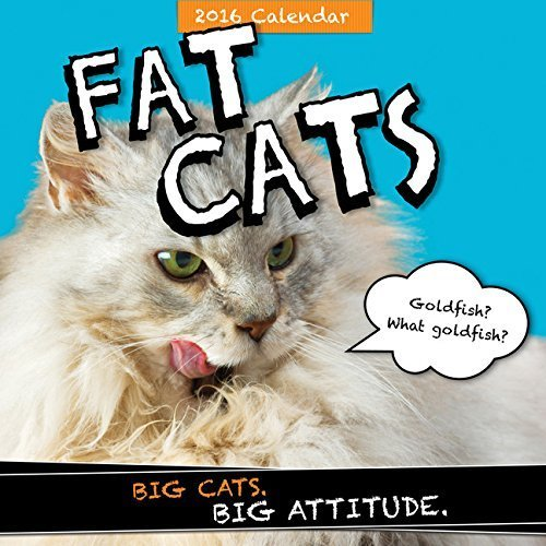 Fat Cats 2016 Wall Calendar by Sourcebooks Inc (2015-07-21)