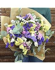 Ramo de Siemprevivas Japan - Flores RECIÉN CORTADAS y NATURALES de Gran Tamaño - ENTREGA EN 24h con Dedicatoria Personalizable Gratuita - FLORES FRESCAS PARA DEDICAR