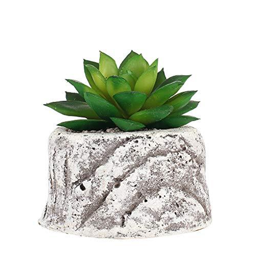 GAOLEI1 Creativo nórdico Plantas suculentas
