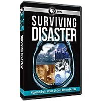 Surviving Disaster [DVD] [Import]